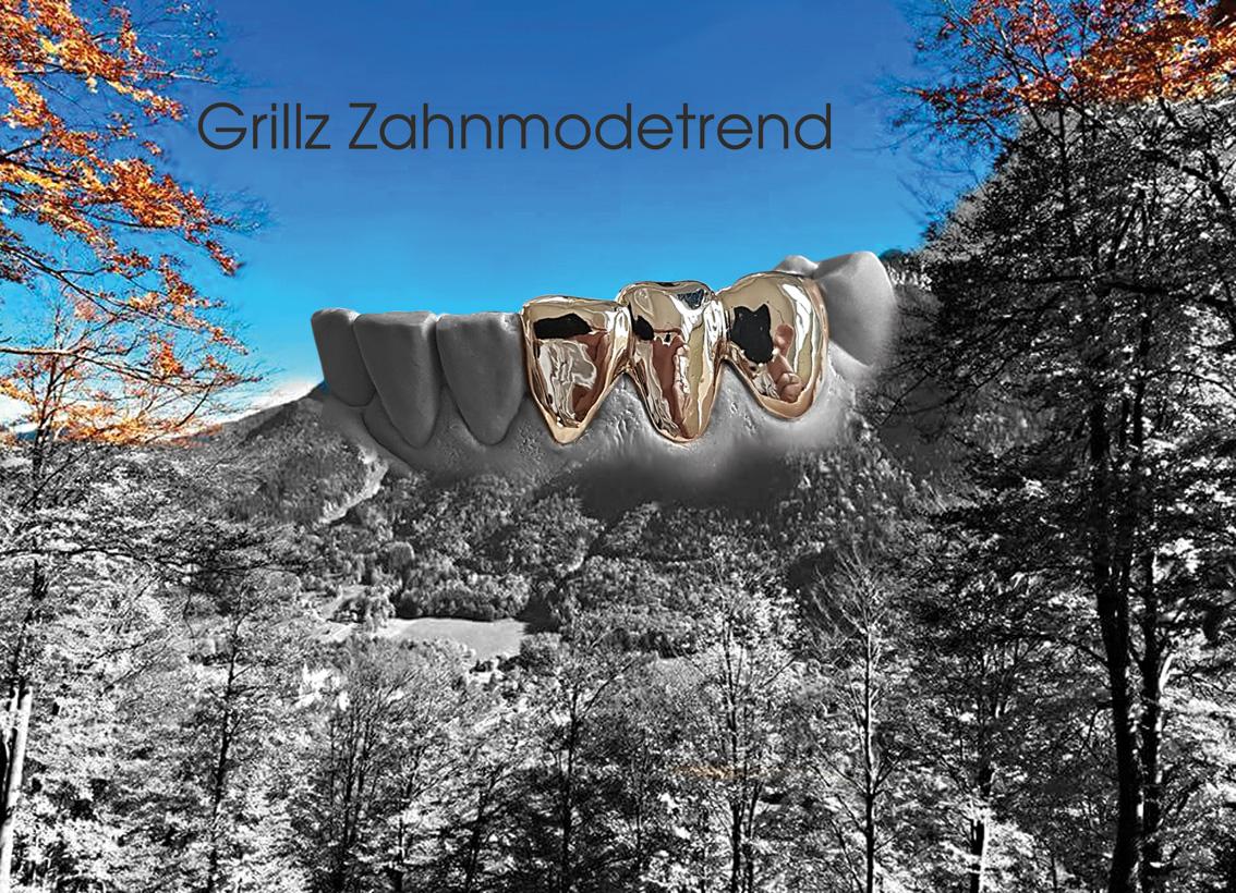 hallweger_dentallabor_14_grillz_02