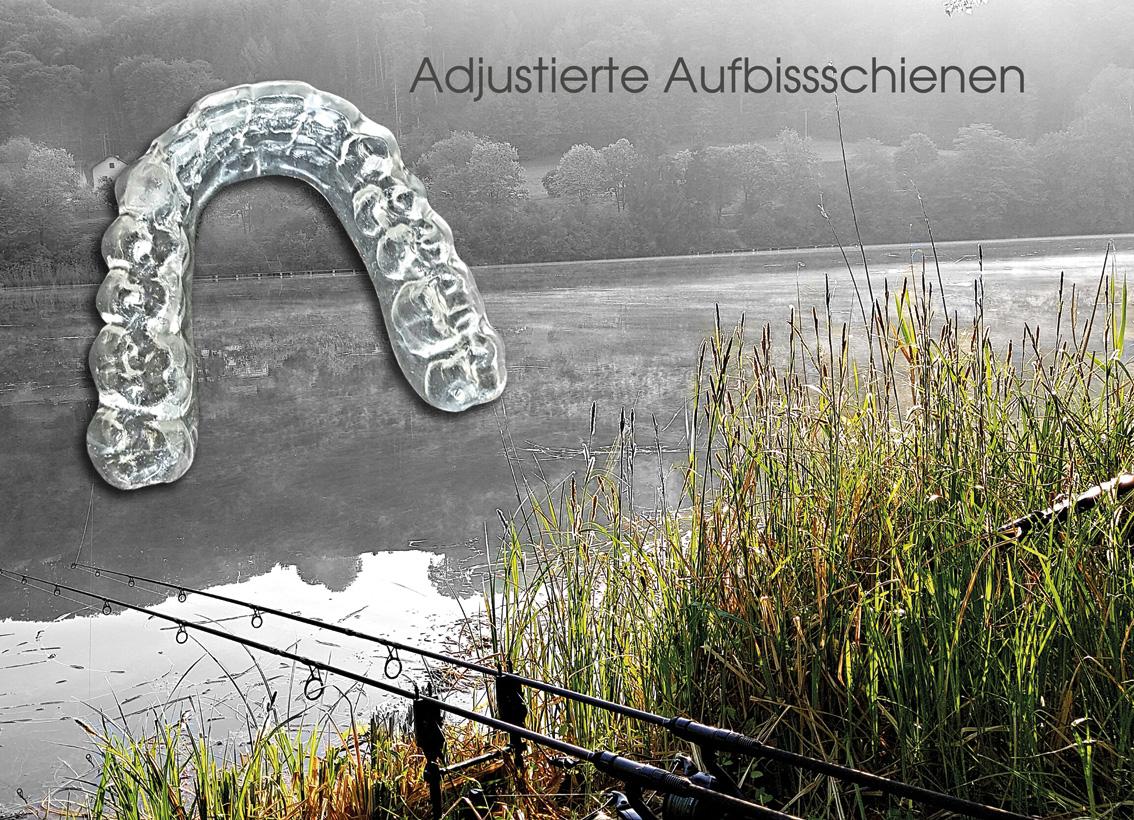 hallweger_dentallabor_bissschiene